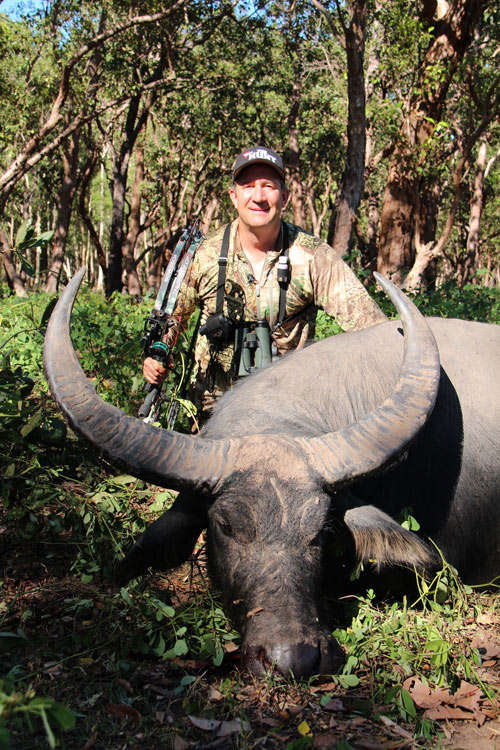 Asiatic water buffalo taken by Scott Haugen with a forged single bevel Ashby broadhead
